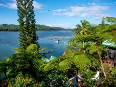 Punta Isla Resort