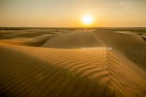 Sunset at Bigi Sand Dunes in the Thar Desert, Jaisalmer, India