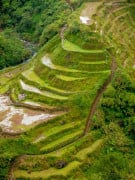 Banaue Rice Terraces in Banaue, Ifugao, Philippines