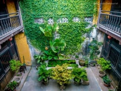 Greeneries at the Courtyard inside the Museum of Folklore in Hoi An Ancient Town, Quang Nam Province, Vietnam