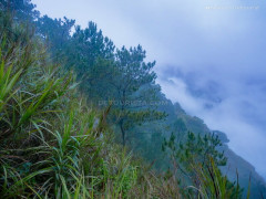 Cloudy morning at Kiltepan Viewpoint, in Sagada, Mountain Province, Philippines