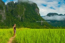 Karst mountains and rice fields, in Vang Vieng, Laos