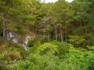Near Sumaguing Cave, in Sagada, Mountain Province, Philippines