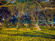 Old English cemetery at night, in Georgetown Penang, Malaysia