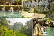 Central Bali — Tegalalang Rice Terraces, Tampaksiring, Tirta Empul, Gunung Kawi