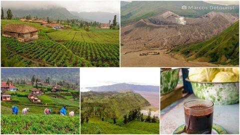 Mount Bromo Viewpoint & Cemoro Lawang