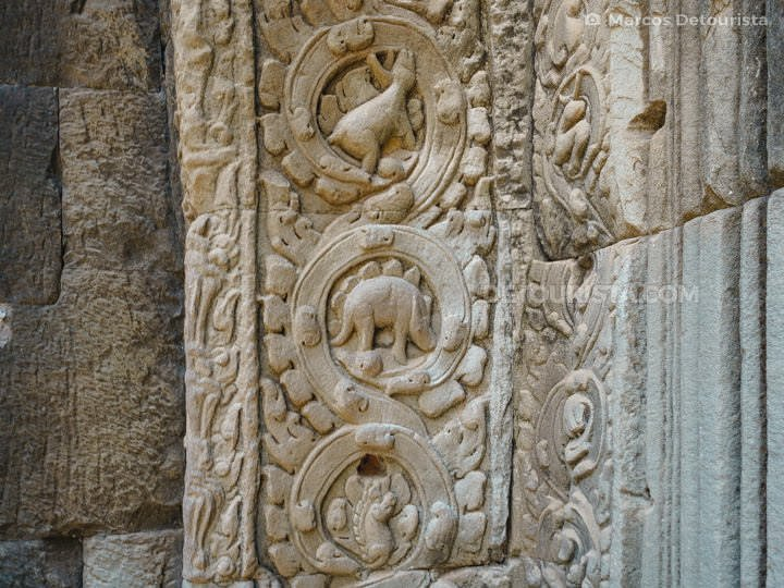 Dinosaur stone carving at Ta Prohm Temple, in Siem Reap, Cambodi