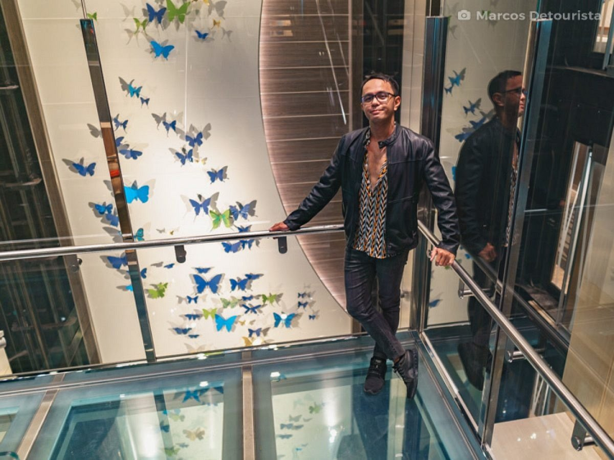 Butterfly Wall at the Elevators (Lifts) - Quantum of the Seas by